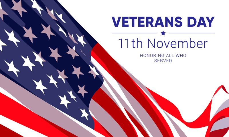 flag with veterans day words