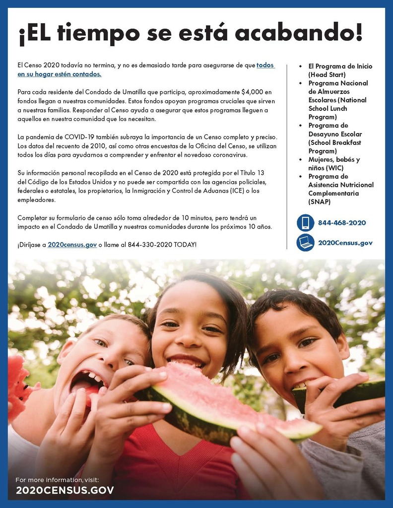 Census 2020 Flyer - Spanish